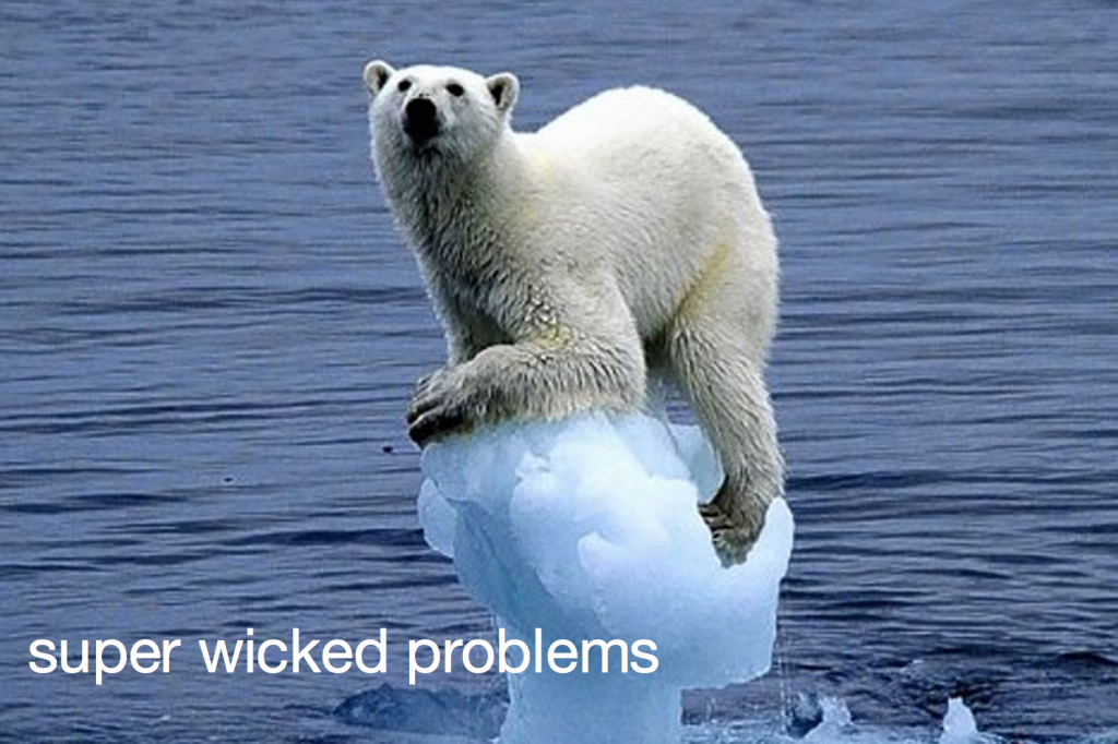 super wicked problem polar bear